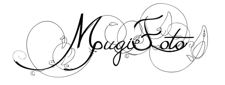 mugifoto.at